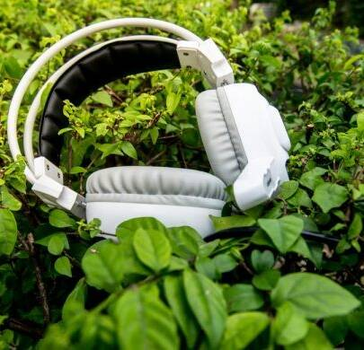Playing Music to Your Plants Can Be Beneficial