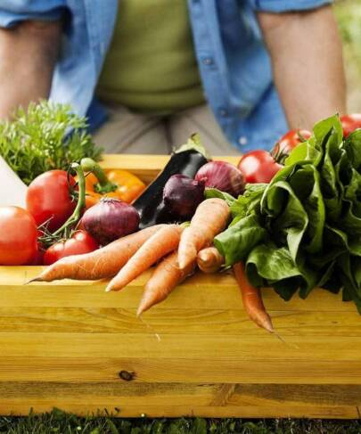 How About Growing Your Own Vegetables from Home This Summer?